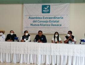 Considera Panal opciones para elección de 2022 en Oaxaca