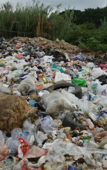 Reanuda crisis de basura en Oaxaca y crean nuevo tiradero ilegal