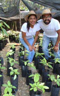 Eliminando la pobreza con la producción de cacao