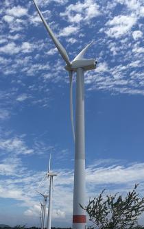 Beneficiadas por eólicas en el Istmo, más de 400 empresas