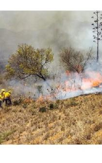Impiden a brigadas oficiales combatir incendio en Chimalapas