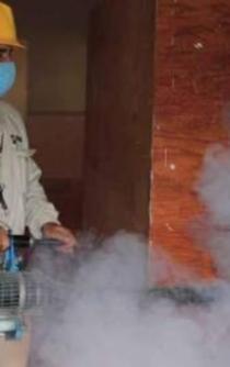 Se disparan 312% casos de dengue y durante ocho meses gobierno no compró insecticida