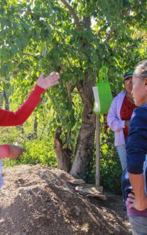 Con iniciativas verdes, maestra empodera a mujeres de la Mixteca