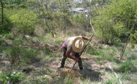 cerros_oaxaca_ambientalistas.jpg